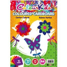 Carton colorat asortat A4 160g 12 culori 24 coli