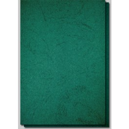 coperta carton imitatie piele verde