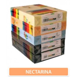 carton nectarina