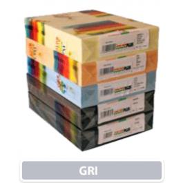 carton gri A4 160g
