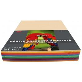 Hartie colorata asortata A3 80g 500 coli 10 culori