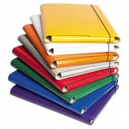 Mapa cu elastic din carton 310 - diferite culori