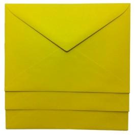 plic c6 colorat galben