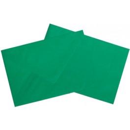 Plic colorat C5 80g/mp verde 25buc/set