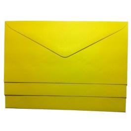 plic dl colorat galben