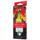 Carioci Unicolora Daco 6 culori