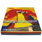 Carton colorat asortat A4 240g 10 culori