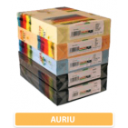 Carton colorat A4 160g - auriu