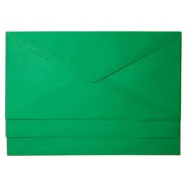 plic dl colorat verde inchis 80g