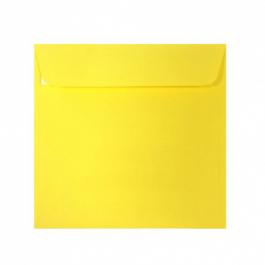 Plic galben patrat 14x14
