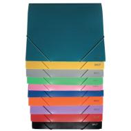 Mapa plastic cu elastic A4 Daco - diferite culori